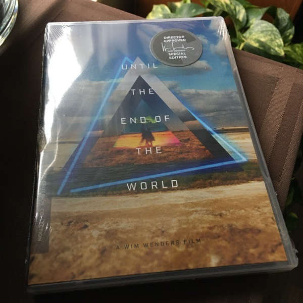 DVD case for the film Until the End of the World