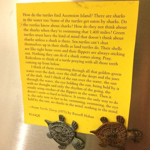 Picture of quote from Turtle Diary by Russell Hoban printed on yellow paper, pinned to a fridge with sea turtle magnets; follow first link for full text